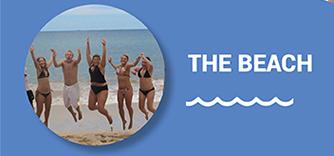 newsletter spring break beach